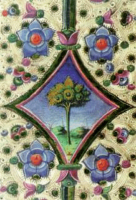 Garden Club Ferrara